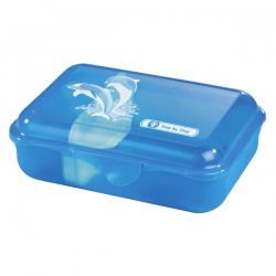 Step by Step Lunchbox Brotdose Happy Dolphins