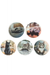 Ergobag Kletties Katzen 5 Stk matt Mini Cubo Pack
