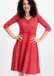 Blutsgeschwister Kleid country rose swing dress paisley power