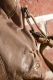 aunts and uncles Marshmallow sand Handbag L